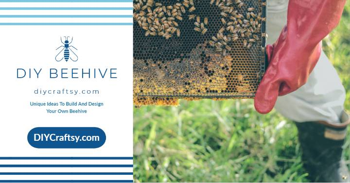 Unique Ideas To Build And Design Your Own Beehive at Home