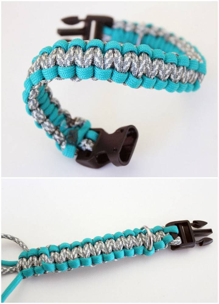 Dog Collar Pattern