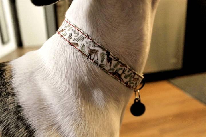 How to Make a Homemade Dog Collar
