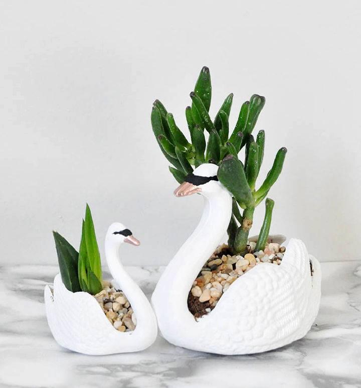 DIY Swan Succulent Planters