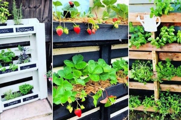 60 easy pallet garden ideas to start gardening using free pallets