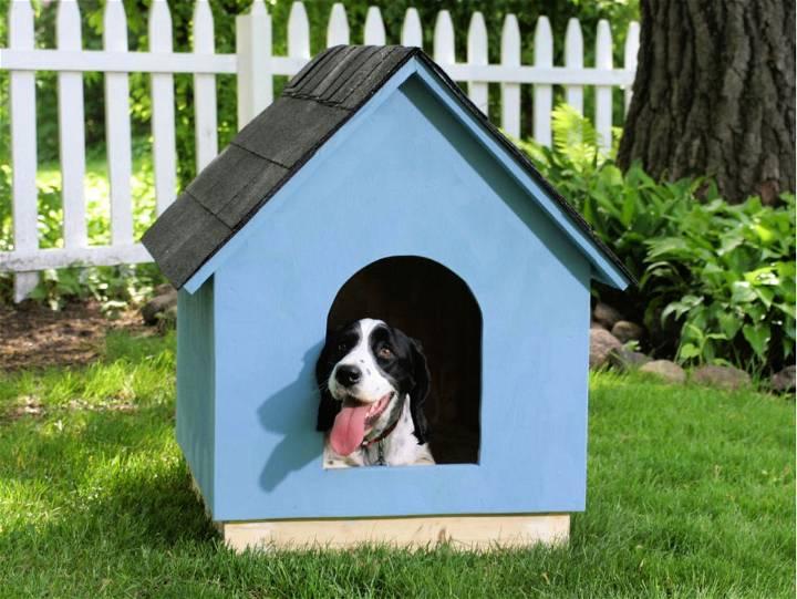 A frame Dog House