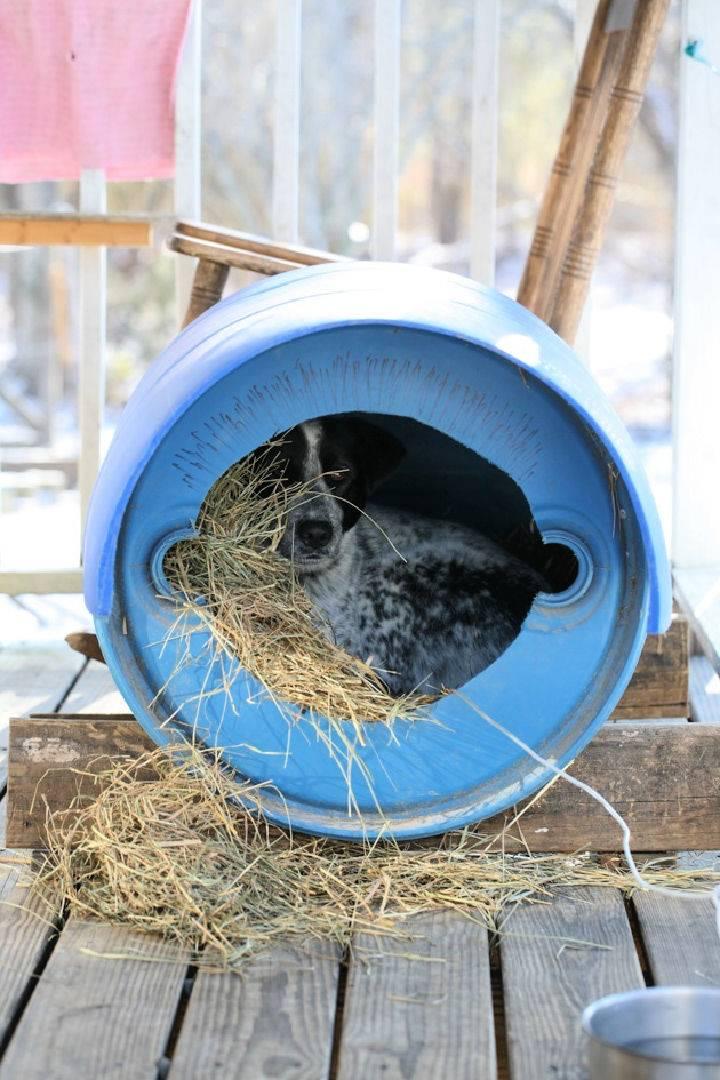 Barrel to Dog House