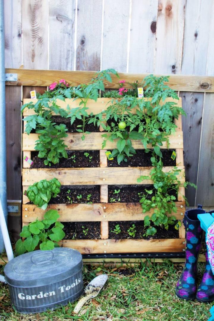 Build a Pallet Garden