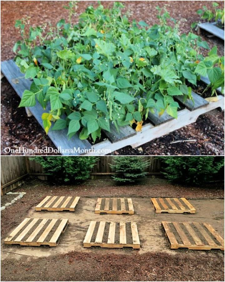Creating a Little Pallet Garden