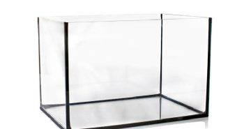 DIY Glass Aquarium