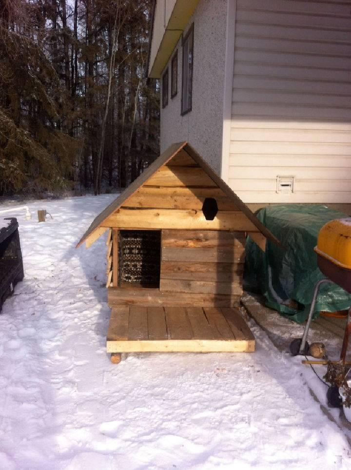 Dog House Using Pallet