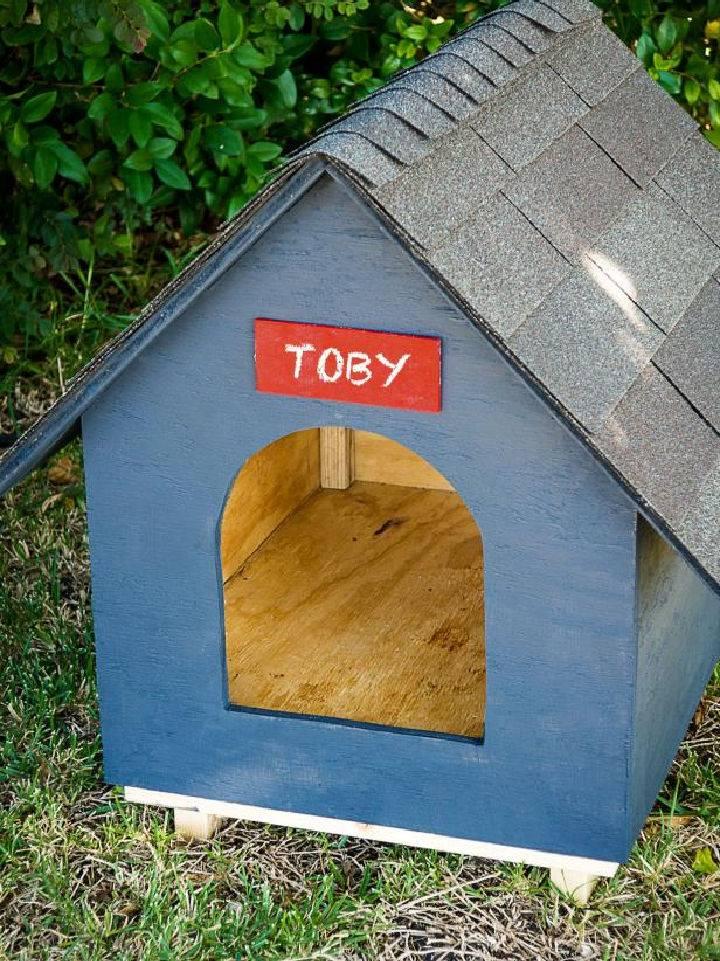 Dog House Using Plywood