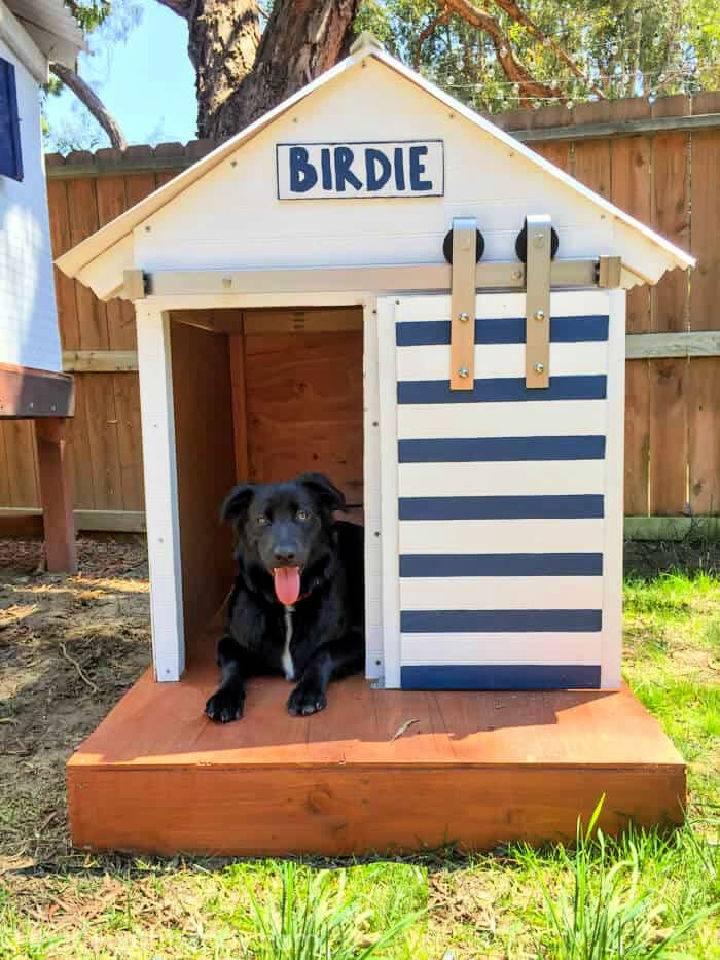 Dog House with Barn Door