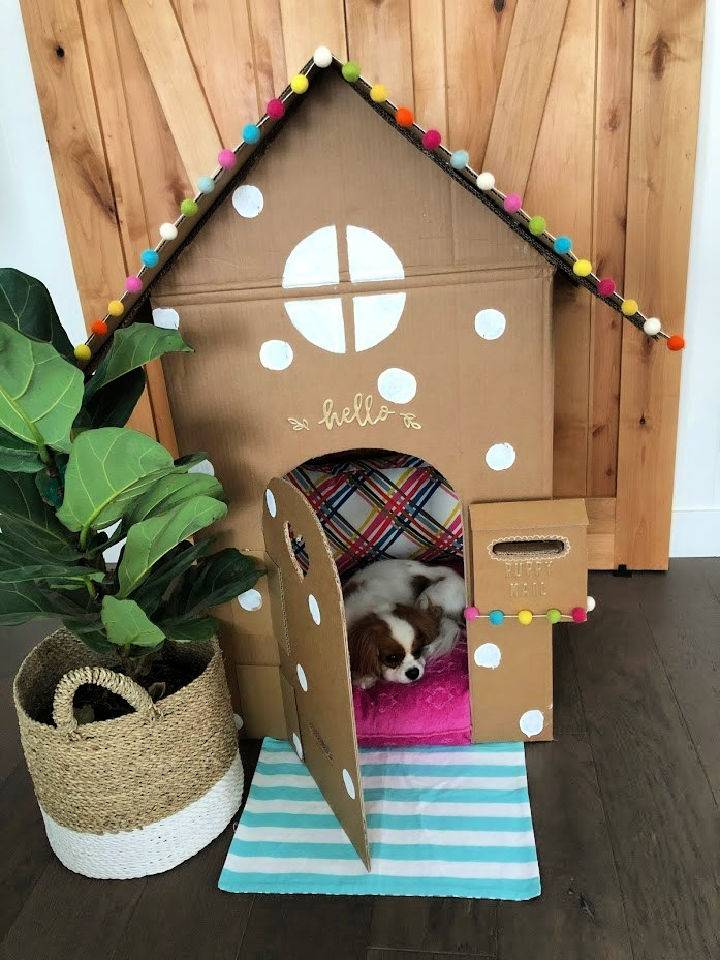 Dog Playhouse Out of a Box