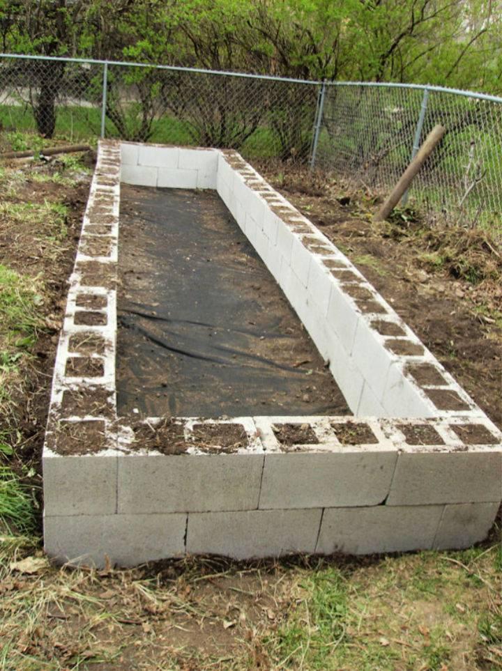 Garden Bed with Cinder Blocks