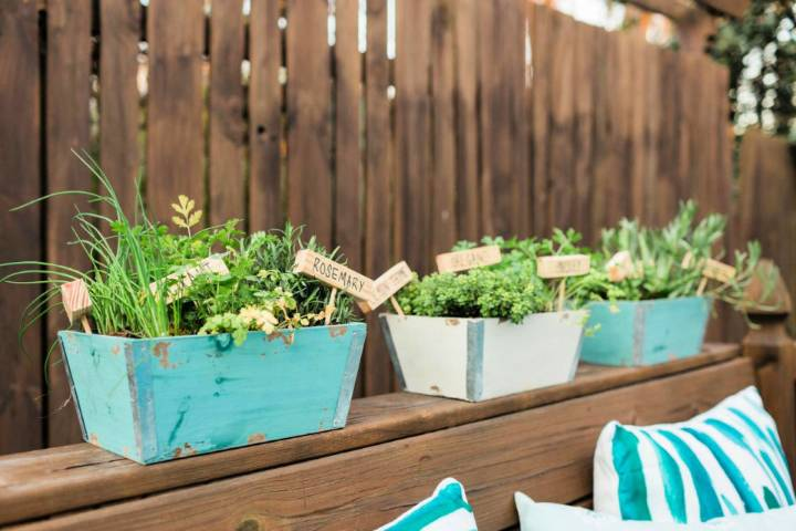 Mini Herb Gardening for Your Porch
