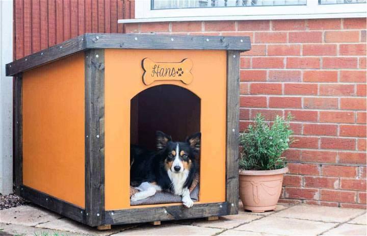 Plywood Dog House