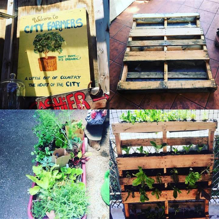 pallet vertical garden tutorial