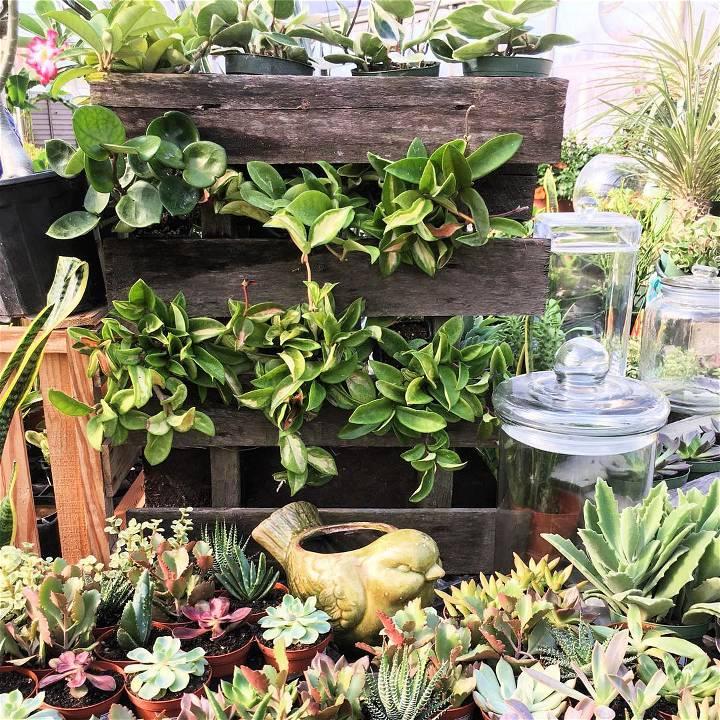 small pallet garden design