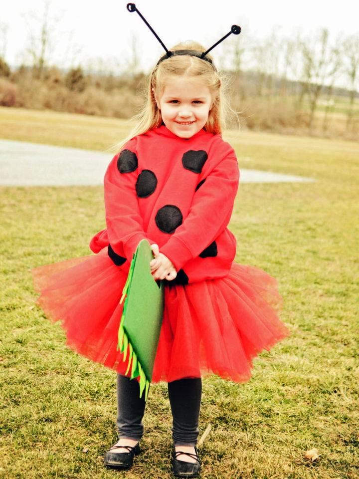 Homemade Ladybug Costume for Halloween
