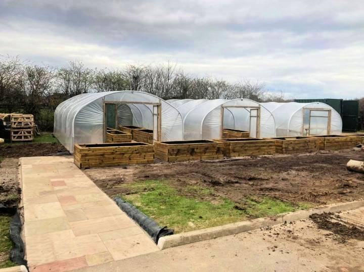 How to Start A Commercial Greenhouse Operation
