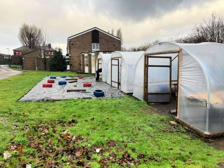 How to Start A Greenhouse Operation