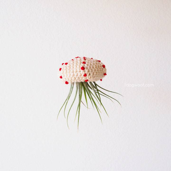 Crochet Air Plant Jellyfish Pattern
